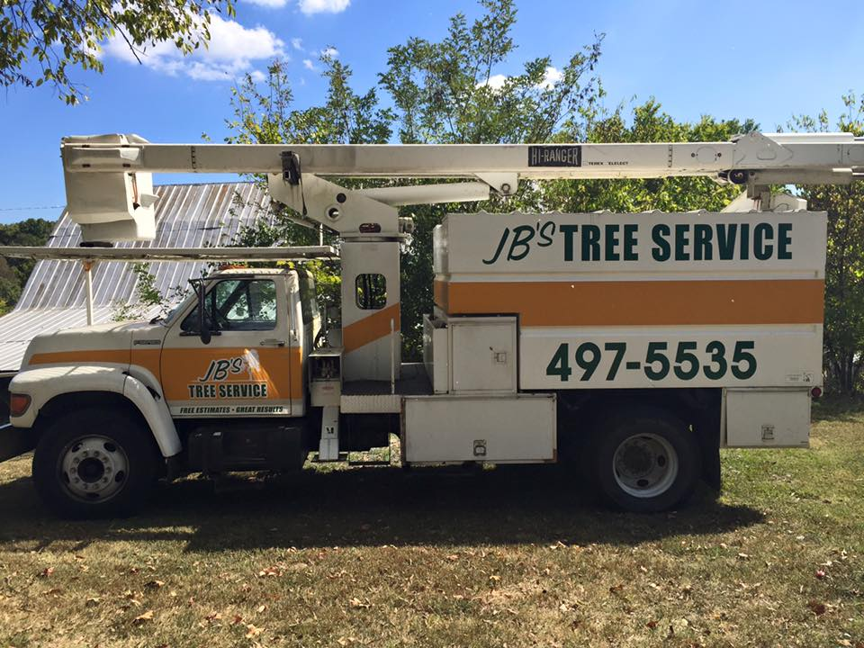 dsignz lettering big truck tree trimmer fleet advertising stripe wrap